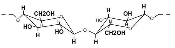 Molecular structure of cellulose