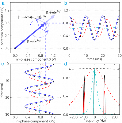 (a) An amplitude modulated signal in the rotating frame of reference is a vector with a time dependent length. The instantaneous signal is represented by the thick blue arrow; the thinner arrows display the two sidebands of the AM signal. (b) and (c) the quadrature and in-phase components of the demodulated input signal: the blue trace is the unfiltered signal, the dashed black, red and cyan traces are the filtered signals with f-3dB = 500 Hz, 100 Hz and 20 Hz, respectively. (d) The frequency spectrum of the demodulated signal after filtering with three different bandwidths (black, red and cyan curves).