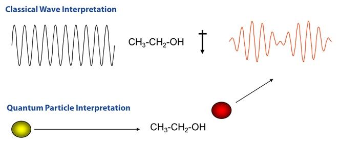 Comparison of Raman scattering interpretations