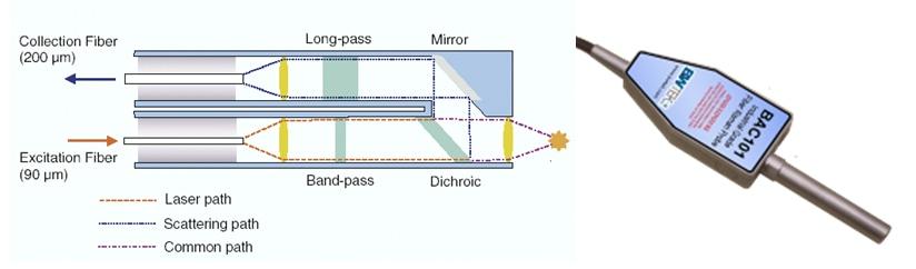 Typical Design of a Raman Probe