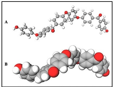 PEEK 2n polymer showing bent and twisted conformation. A) Ball-and-stick model; B) van der Waals spheres model. White = hydrogen; gray = carbon; red = oxygen. (shown with terminal hydroxyls).