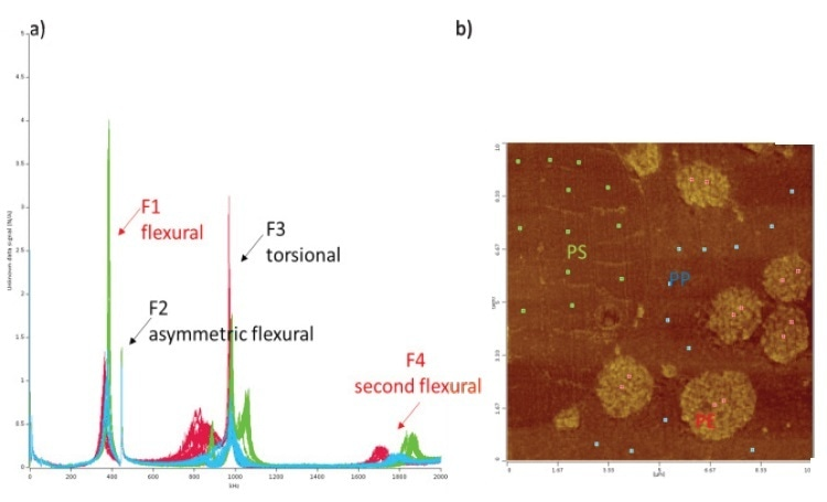 LCR spectra (a) and AFM height image (b) showing spectra of individual points on the PP matrix in blue, PE in red and PS in green.