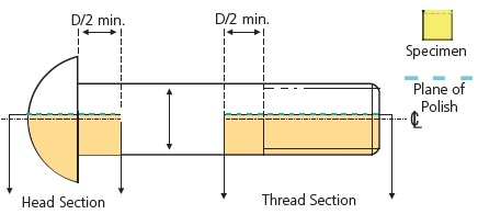 Scheme for longitudinal sectioning.