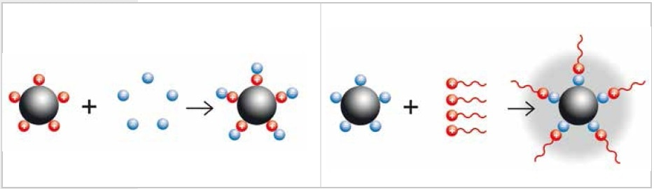 Neutralization of charged particles by adding a buffer (electrostatic stabilization, left) or by adding long-chained molecules (steric stabilization, right)