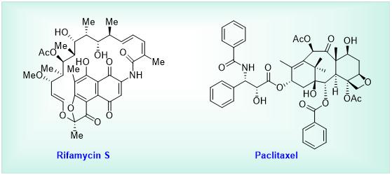 Rifamycin S and Paclitaxel