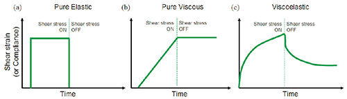 Illustration showing the strain response to an applied stress for (a) purely elastic material (b) purely viscous material (c) viscoelastic material