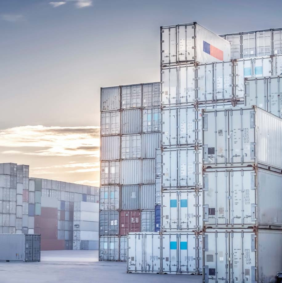 Photodiodes and Sensor Systems for Container and Cargo Scanners.