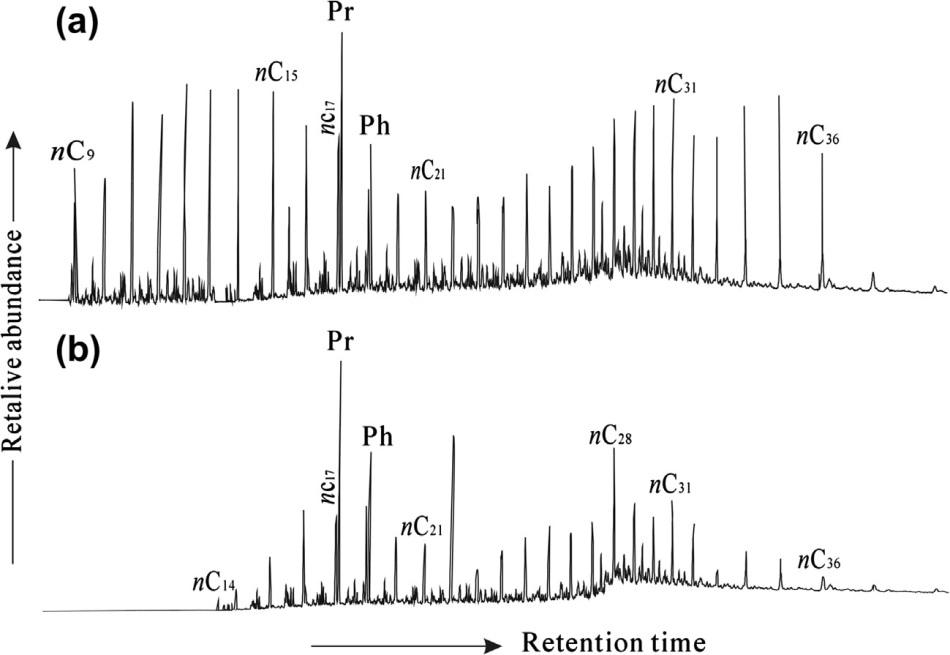 Compounds present in crude oil