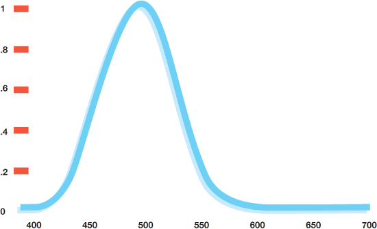 Scotopic Absorption Curve