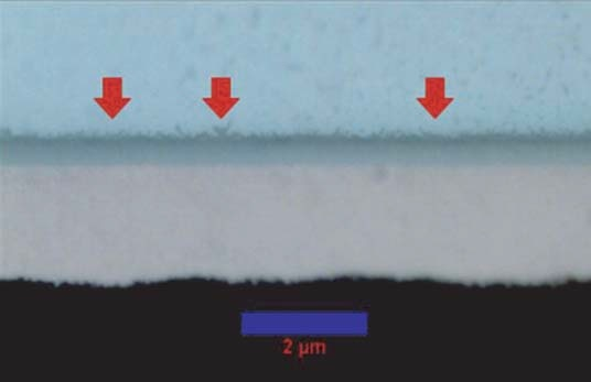 Intermetallic whiskers at the solder joint