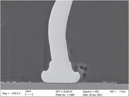 SEM Micrograph of copper bump
