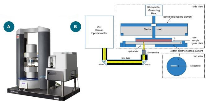 (a) The Thermo Scientific™ HAAKE™ MARSXR RheoRaman System. (b) Schematic diagram of the MARSXR RheoRaman system (showing side and top views of the rheometer sample stage). The iXR Raman spectrometer is free-space coupled to the MARS rheometer using lens tubes and mirrors that direct light into a 20x objective. The objective focuses the incoming laser (green dashed line) and collects the back-scattered Raman light (yellow) coming out of the sample sitting atop the rheometer stage.