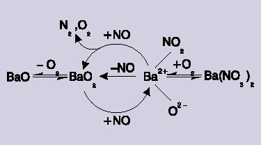 The catalytic reaction scheme.
