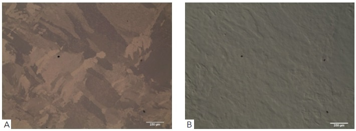 Showing (A) as polished Ti64Al surface with 5 parts Mastermet and 1 part hydrogen peroxide solution using polarized light, (B) shows corresponding differential interference contrast image (DIC) revealing topographic details of the polished surface.