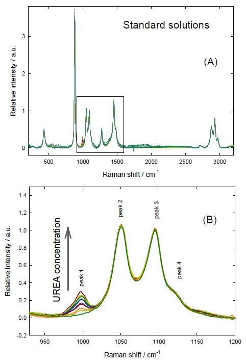 Normalized spectra of the standard solutions of urea + SA in ethanol. (A) Complete spectra (B) Analyzed region.