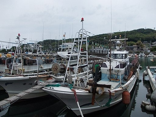 Squid-fishing vessels, Tsuyazak Fishing Port