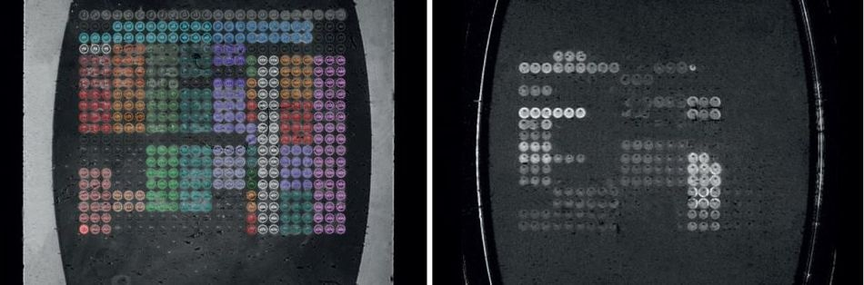 Flow cell image (left) and difference image (right).