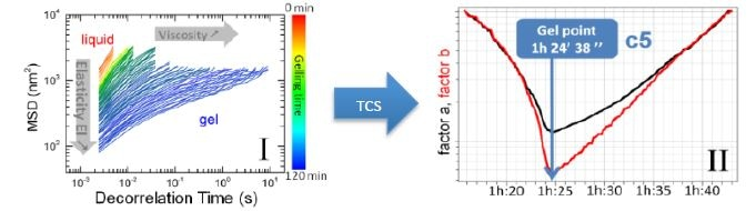 (I) Evolution of MSD curves during gelation. (II) TCS results giving time necessary to create a gel.