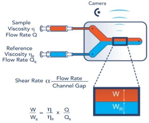 Fluidicam measuring principle