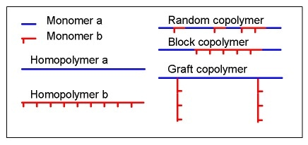 The monomers can be randomly distributed in the copolymer molecule or be present in blocks. Side chains can also be grafted onto the main chain.