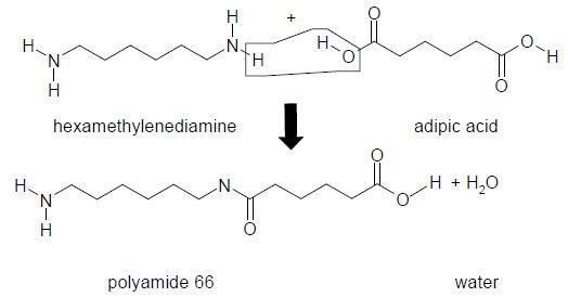 Polycondensation of hexamethylenediamine and adipic acid to polyamide 66.