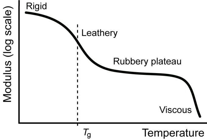 Influence of temperature on the elastic modulus and the behavior of a thermoplastic.