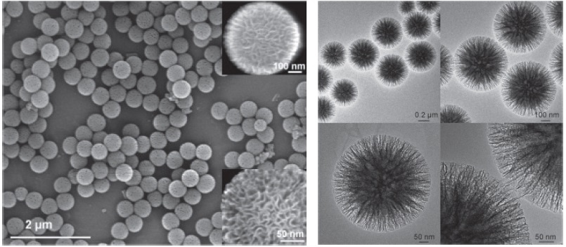SEM and HRTEM images of silica nanospheres KCC-1