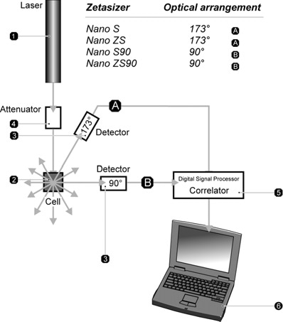 Optical configurations of the Zetasizer Nano series for dynamic light scattering measurements.