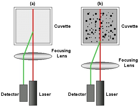 Schematic diagram showing the measurement position for (a) small, weakly scattering samples and for (b) concentrated, opaque samples. The change in measurement position is achieved by moving the focusing lens accordingly.