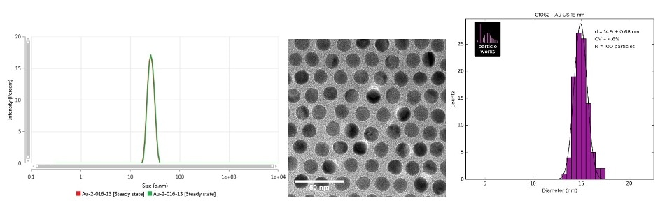 Intensity size distribution as measured by MADLS (left), TEM image (center) and the TEM size distribution (right) of Au-2-016-13