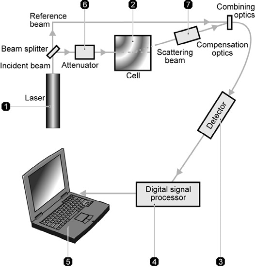 Optical configuration of the Zetasizer for zeta potential measurement