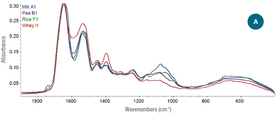 (A) Full-scale ATR-corrected spectra of protein powders