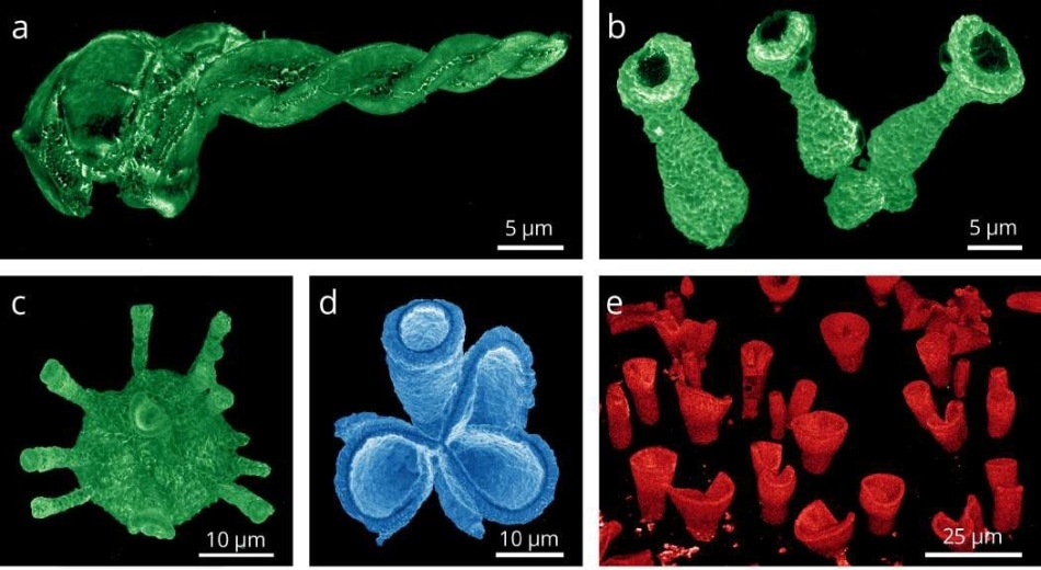 CL intensity maps of synthetically grown 3D perovskite structures acquired with the SPARC CL system. Images show (a) spiral, (b) trumpet, and (c) spiked-coral shapes of CH3NH3PbBr3. (d) CH3NH3PbCl3 coral shape. (e) Field of CH3NH3PbI3 vase shapes. The colors chosen for the color scale represent the emission range of the measured cathodoluminescence (see Figure 2), with lighter colors corresponding to higher emission intensities. The CL maps were acquired at 5 kV acceleration voltage, a beam current of 45 pA, and a pixel dwell time of 100 µs per pixel. Credits: Noorduin Lab, AMOLF. See [1].