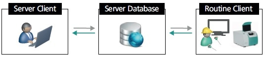 General setup of a client-server system for quality control. The setup consists of three elements: server client, routine client, and server database.