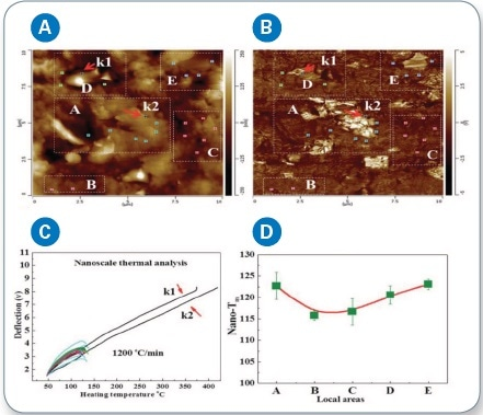 (a) LCR-AFM height image; (b) AFM mechanical image (using LCR) of the PE/BN composites, showing boron nitride clusters in the areas A, D, and E; (c) Local thermal analysis data of the assigned positions were obtained by nano-TA, comparing the melting temperatures of PE and BN; (d) DSC from the PE/BN composites (heating rate of 2 °C min-1).