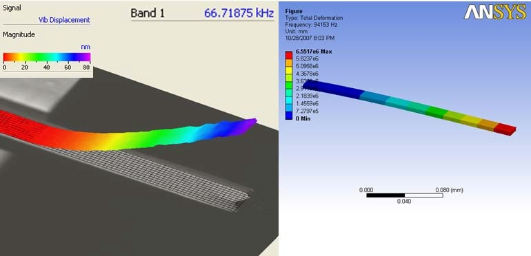 Comparison of cantilever first bending mode determined experimentally (left) and from FE model (right)