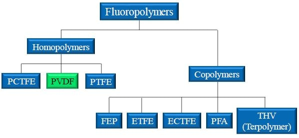 Landscape of popular fluoropolymers. PVDF is a homopolymer produced from the joining of identical monomer units. PVDF is closely related to PCTFE and PTFE.