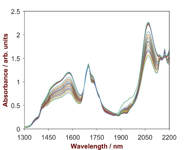 Raw data spectrum of 24 pesticide samples with Cyhalothrin concentrations ranging from 2.3–4.2%.