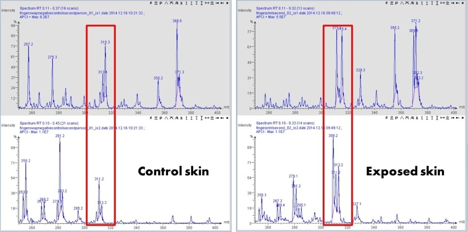 MS data showing both positive ionization (top trace) and negative ionization (bottom trace) of the ASAP finger skin analysis before and after cannabis exposure of the control skin (left) and exposed skin (right).
