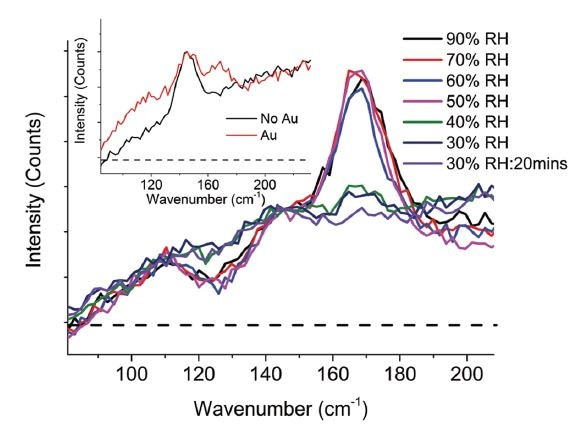The in situ raman spectra highlights the reversible dehydration when relative humidity is decreased but also indicates the presence of a dehydrated species in the Au region (Hooper, 2017).