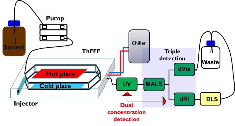 Schematic presentation of the current setup for ThFFF using five different information-rich detectors: ultraviolet (UV), differential refractometer (dRI), multiangle light scattering (MALS), dynamic light scattering (DLS), differential viscosimeter (dVis).