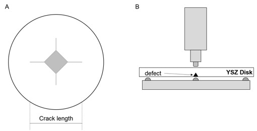 Biaxial flexural strength was assessed before and after defect insertion using piston-on-three ball system according to ISO 6872. (A) Schematic representation of the indented defect and corresponding crack length. (B) The introduced defect is placed face down to ensure the pre-crack effect is taken into consideration.