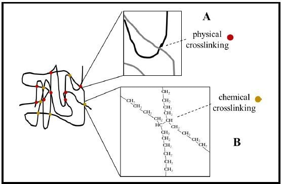 Crosslinking of HSP chains. Crosslinking provides the elastic recovery force for heat shrinkable materials such as tubing. Crosslinking may be either physical crosslinking (A and red dots) from overlapping polymer chains and entanglement or chemical crosslinking (B and gold dots) via a direct chemical bond between adjacent polymer chains. (Example shown: polyethylene).