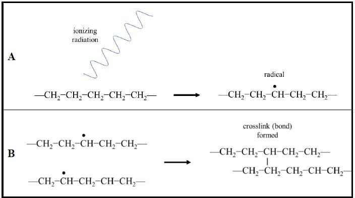 Radiation crosslinking of polymer chains. (A) Ionizing radiation induces the formation of radicals (unpaired valence electrons) in the polymer chains. (B) Radical electrons pair and form covalent bonds between neighboring polymer chains creating crosslinking. (Example shown: polyethylene).