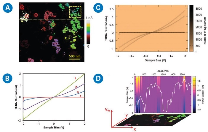 Processing, analysis, and visualization of nanoelectrical data from DCUBE-TUNA mode with NanoScope Analysis software: (a) current slice at +1 V, (b) point-selected I-V spectra as numbered in (a), (c) density plots based on 1890 I-V spectra from the dashed-yellow-square region in (a), and (d) TUNA current changes over sample bias across the dashed-yellow line in (a) where the white plot on the image is the corresponding surface profile with a range of 150 nm in height. This is a two-dimensional slice of the data cube at a fixed Y position as indicated by the coordinates on the image.