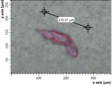 Red particle on a filter with indication of particle length and aperture size.