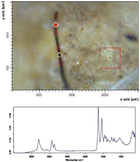 Fiber found in a river sediment and adjusted aperture (red rectangle) of the measurement. Bottom right: acquired spectrum of the fiber.