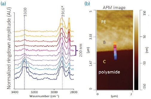 (a) AFM height image and (b) AFM-IR spectra across PE/PA layer interface.