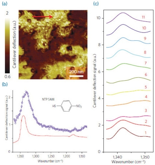 (a) An AFM deflection image showing SAMs of NTP on a gold substrate; (b) comparison of AFM-IR spectrum (blue) and ATR spectrum (red) of NTP SAMs; (c) array of AFM-IR spectra collected across the red line shown in (a), demonstrating spatial resolutions of ~20 nm.