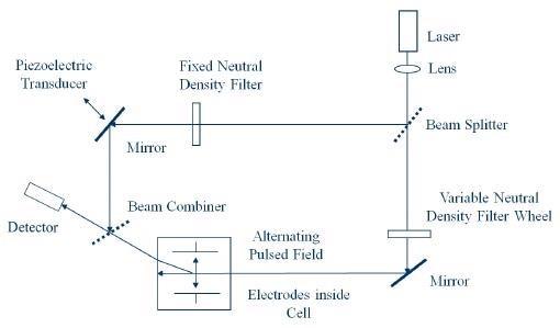 Optical Arrangement for Zeta Potential Determination.